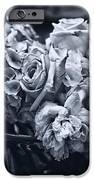 Vase of Flowers 2 iPhone Case by Madeline Ellis