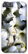 white flowers at dusk iPhone Case by Sumit Mehndiratta