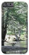 Yosemite Creek iPhone Case by REMEGIO ONIA