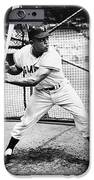 WILLIE MAYS (1931- ) iPhone Case by Granger