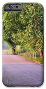 A Beautiful Sparks Lane Morning iPhone Case by Thomas Schoeller