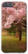 Approach Me - Holmdel Park iPhone Case by Angie Tirado