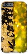 Autumn Carvings iPhone Case by James BO  Insogna