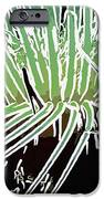 Beautiful Sea anemone 3 iPhone Case by Lanjee Chee