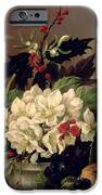 Christmas Roses iPhone Case by Willem van Leen