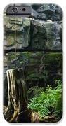 Fairy Waterfall iPhone Case by Douglas Barnett