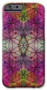 Flower of Life iPhone Case by Filippo B
