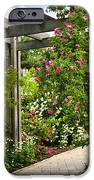 Garden with roses iPhone Case by Elena Elisseeva