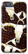 Longhorn Art - Cattle Call - Bull Cow iPhone Case by Sharon Cummings