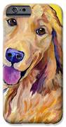 Molly iPhone Case by Pat Saunders-White