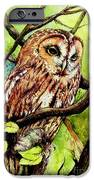 Owl from Butterfingers and Secrets iPhone Case by Morgan Fitzsimons