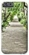 Philadelphia Alley Charleston Pathway iPhone Case by Dustin K Ryan