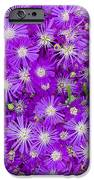 Purple Flowers iPhone Case by Frank Tschakert