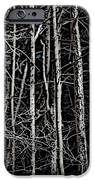 Spring Woods Simulated Woodcut iPhone Case by David Lane