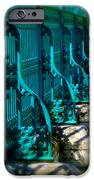 The Fence iPhone Case by Perry Webster