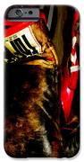 The Gloves iPhone Case by Steven  Digman