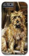 Waiting for Master   iPhone Case by Jane Bennett Constable
