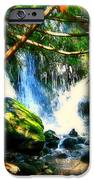 White Falls iPhone Case by Perry Webster
