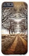 winter avenue iPhone Case by Meirion Matthias