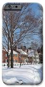 Woodstock Green iPhone Case by Susan Cole Kelly