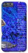 Year of the Rabbit 2011 . blue iPhone Case by Wingsdomain Art and Photography