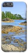 Coast Of Pacific Ocean On Vancouver Island IPhone Case by Elena Elisseeva