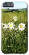 Field Of Flowers IPhone Case by Les Cunliffe