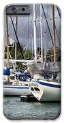 In The Harbor IPhone Case by Cheryl Young