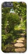 Summer Garden And Path IPhone Case by Elena Elisseeva