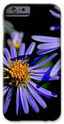 The Flower Fades IPhone Case by Thomas R Fletcher