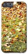 Autumn IPhone 6s Case by Les Cunliffe