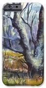 A Tree For Thee IPhone Case by Carol Wisniewski