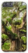 Angel Oak Tree Of Life IPhone 6s Case by Dustin K Ryan