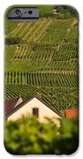 Alsace Church IPhone Case by Brian Jannsen