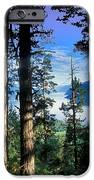 Altay Lakes Teletskoe IPhone Case by Anonymous