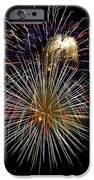 4th Of July 1 IPhone Case by Marilyn Hunt