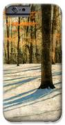 A Touch Of Autumn IPhone Case by Darren Fisher