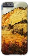 A Tree And Orange Hill IPhone Case by Jeff Swan