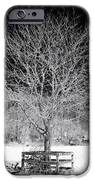 A Tree In The Snow IPhone Case by John Rizzuto