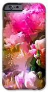 Abstract 272 IPhone Case by Pamela Cooper