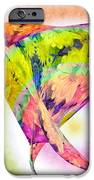 Abstract Crazy Daisies - Flora - Heart - Rainbow Circles - Painterly IPhone Case by Andee Design