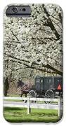 Amish Buggy Fowering Tree IPhone Case by David Arment