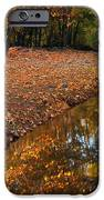 Arizona Autumn Reflections IPhone Case by Mike  Dawson