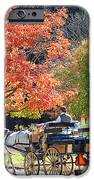 Autumn Carriage Ride IPhone Case by Barbara McDevitt