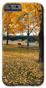 Autumn In Calgary IPhone 6s Case by Trever Miller