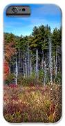 Autumn In The Adirondacks IPhone Case by David Patterson