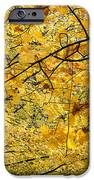 Autumn Leaves IPhone Case by Michal Boubin