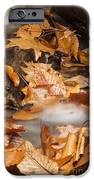 Autumn Water Eddy IPhone Case by Darleen Stry