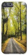 Autumns Day IPhone Case by Kim Andelkovic