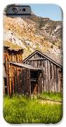 Bachelors Row IPhone Case by Sue Smith